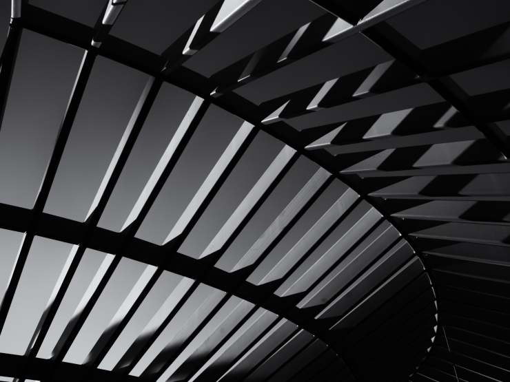 Day 361... Angles, Curves, Light, and Shadow